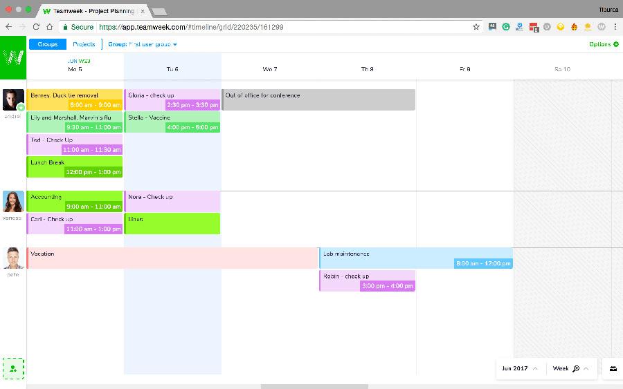 Team Collaboration Tool: Teamweek screenshot