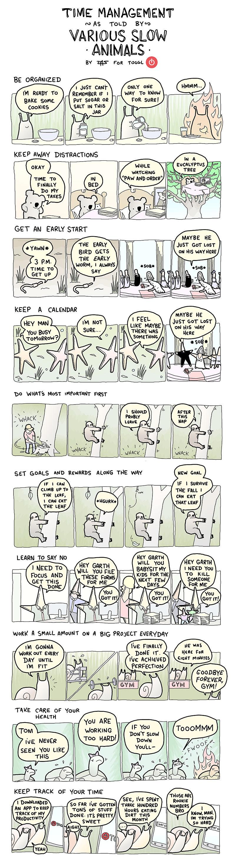 time management-slow-animals-2