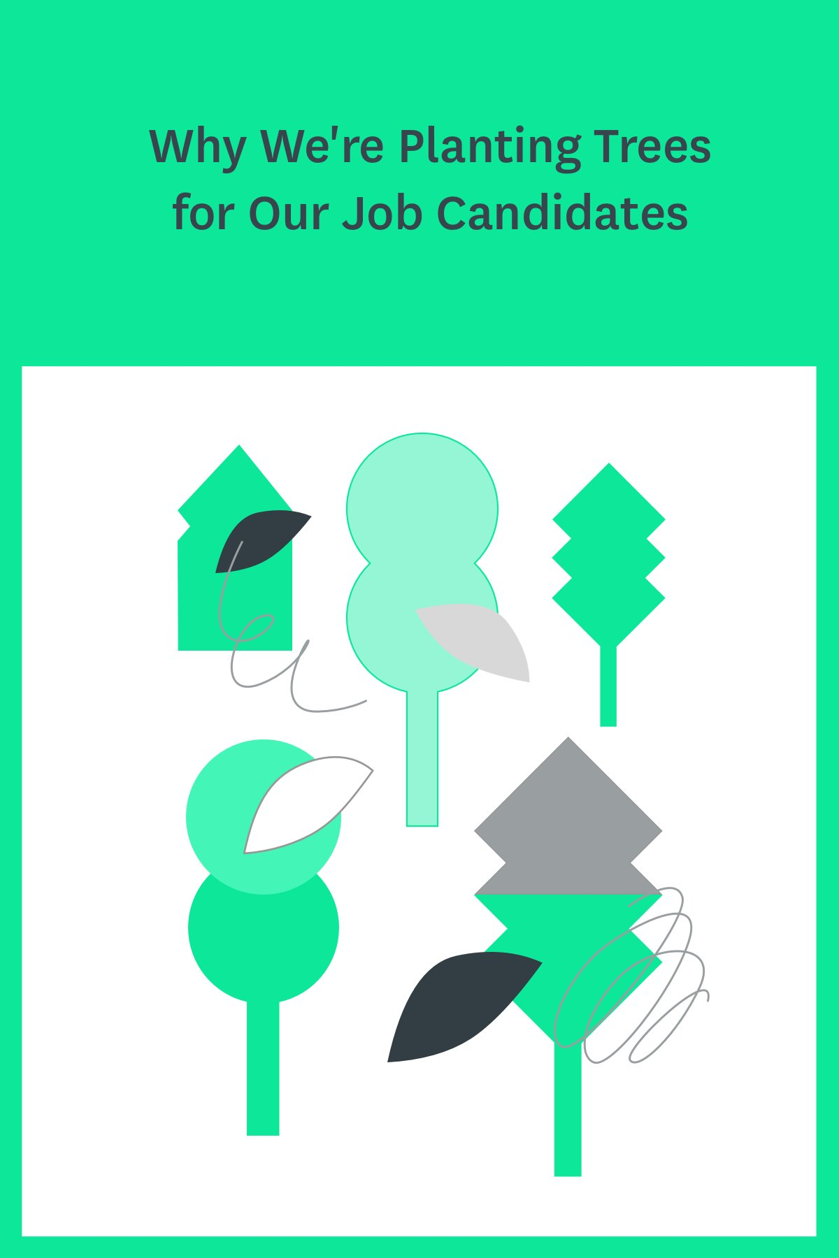 That's right! If you apply for a job at Teamweek using our cool quiz-based application system and you score high enough, we'll plant a tree in your honor. Click through to find out more and see what jobs we're hiring for.