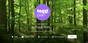 Toggl Plan Forest 300x146